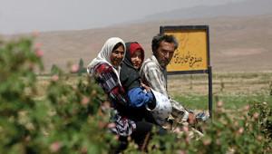 Dr.Hauschka Etherische rozenolie uit Iran